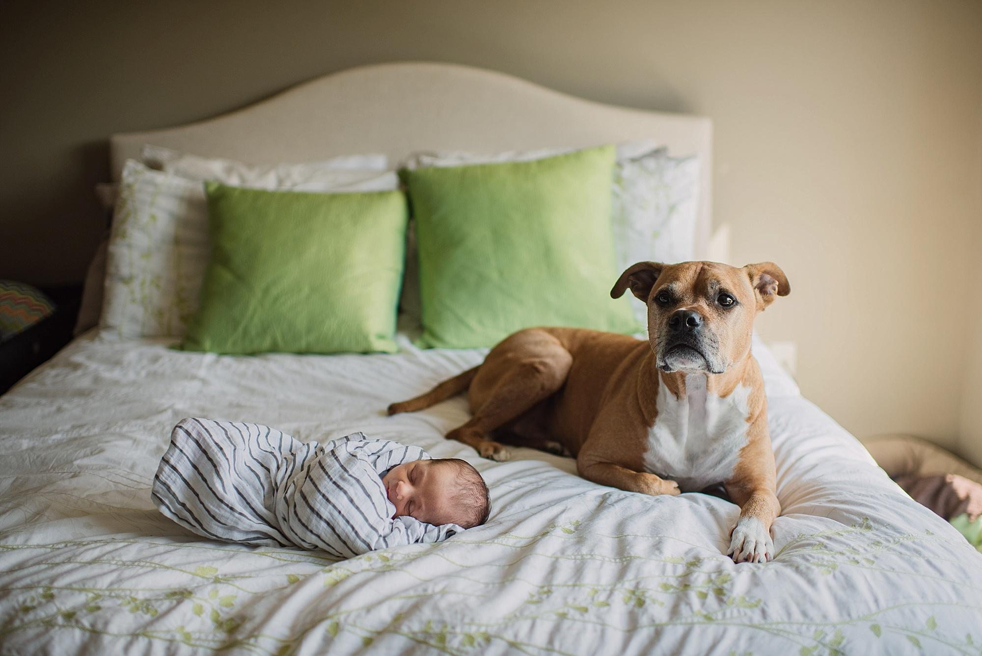 Welcome-baby-Cullin-akron-ohio-photographer-lauren-grayson-newborn-session_0052.jpg