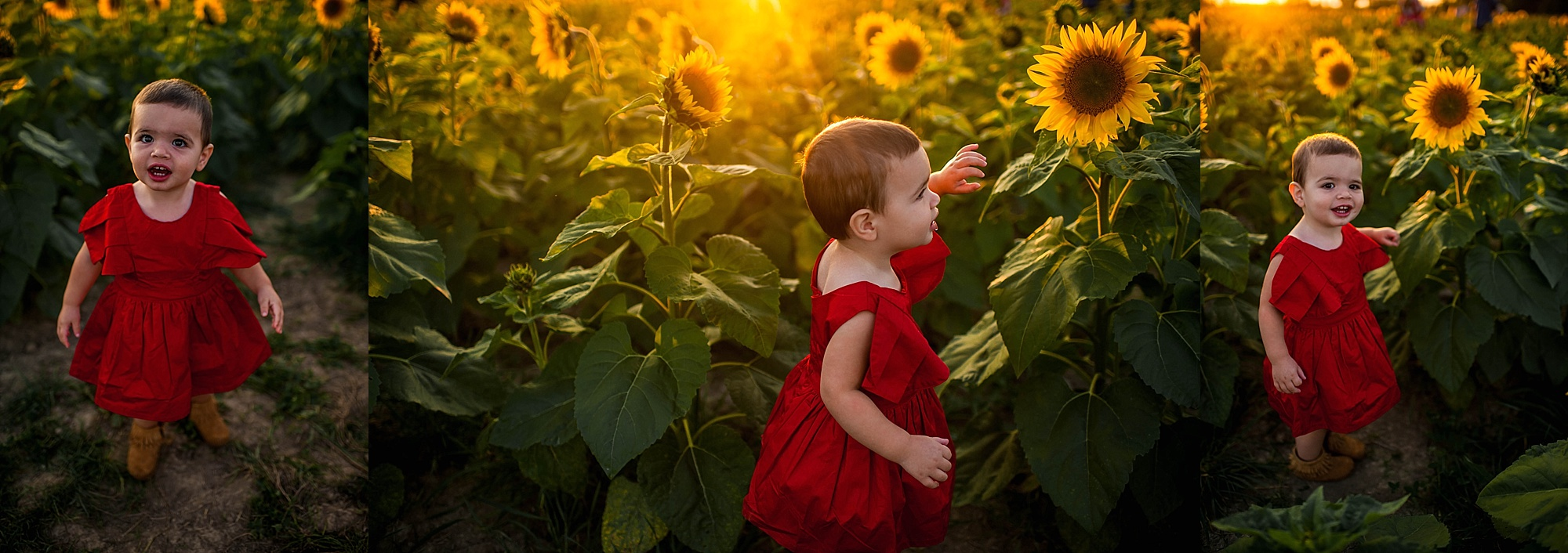 lauren-grayson-photography-cleveland-ohio-photographer-sunflower-fields-sunset-golden-hour-photo-shoot-mommy-and-me-family-child-photographer_0557.jpg