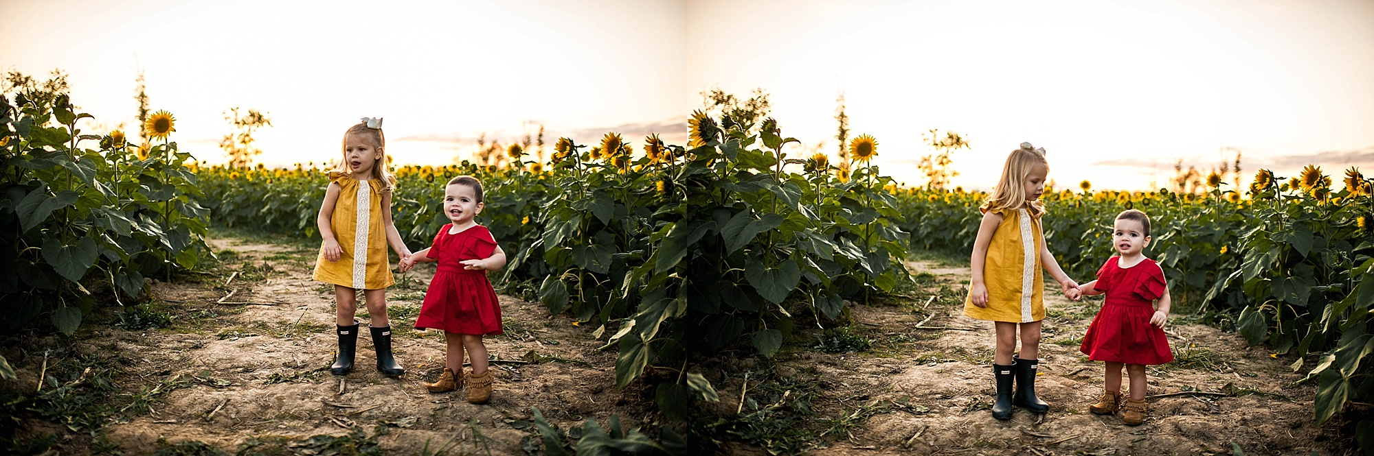 lauren-grayson-photography-cleveland-ohio-photographer-sunflower-fields-sunset-golden-hour-photo-shoot-mommy-and-me-family-child-photographer_0569.jpg