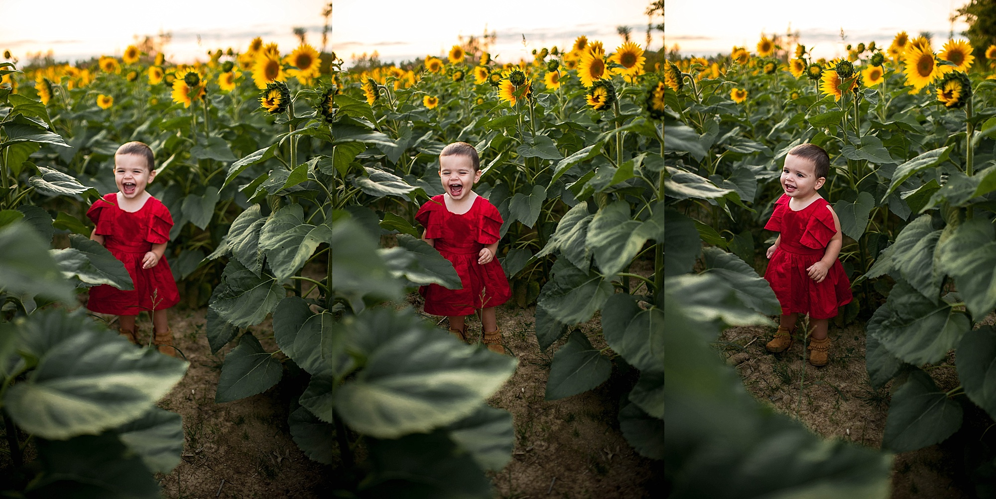 lauren-grayson-photography-cleveland-ohio-photographer-sunflower-fields-sunset-golden-hour-photo-shoot-mommy-and-me-family-child-photographer_0580.jpg