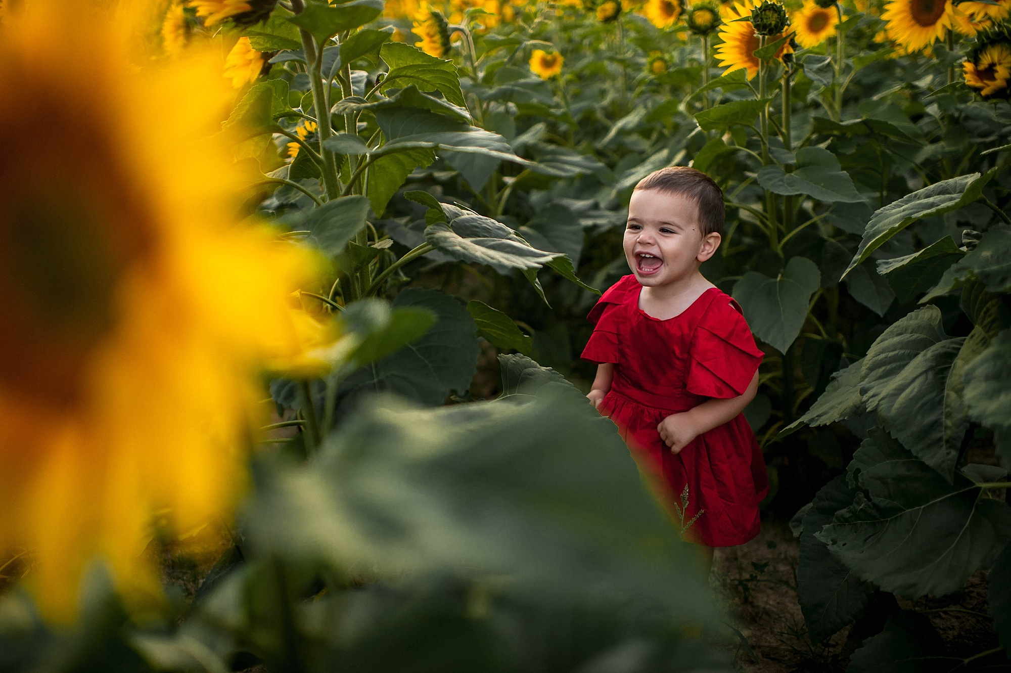 lauren-grayson-photography-cleveland-ohio-photographer-sunflower-fields-sunset-golden-hour-photo-shoot-mommy-and-me-family-child-photographer_0581.jpg