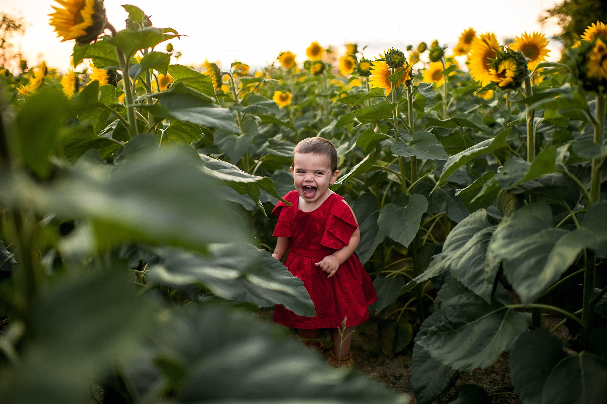 lauren-grayson-photography-cleveland-ohio-photographer-sunflower-fields-sunset-golden-hour-photo-shoot-mommy-and-me-family-child-photographer_0582.jpg