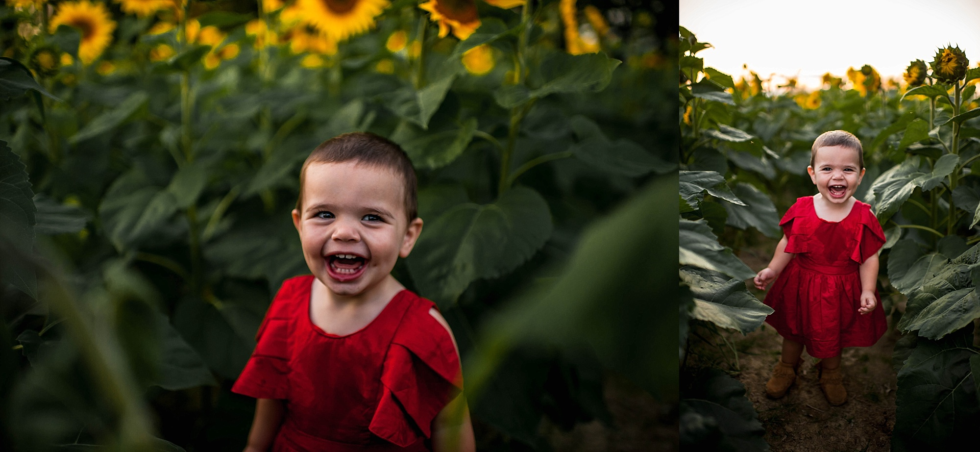 lauren-grayson-photography-cleveland-ohio-photographer-sunflower-fields-sunset-golden-hour-photo-shoot-mommy-and-me-family-child-photographer_0584.jpg