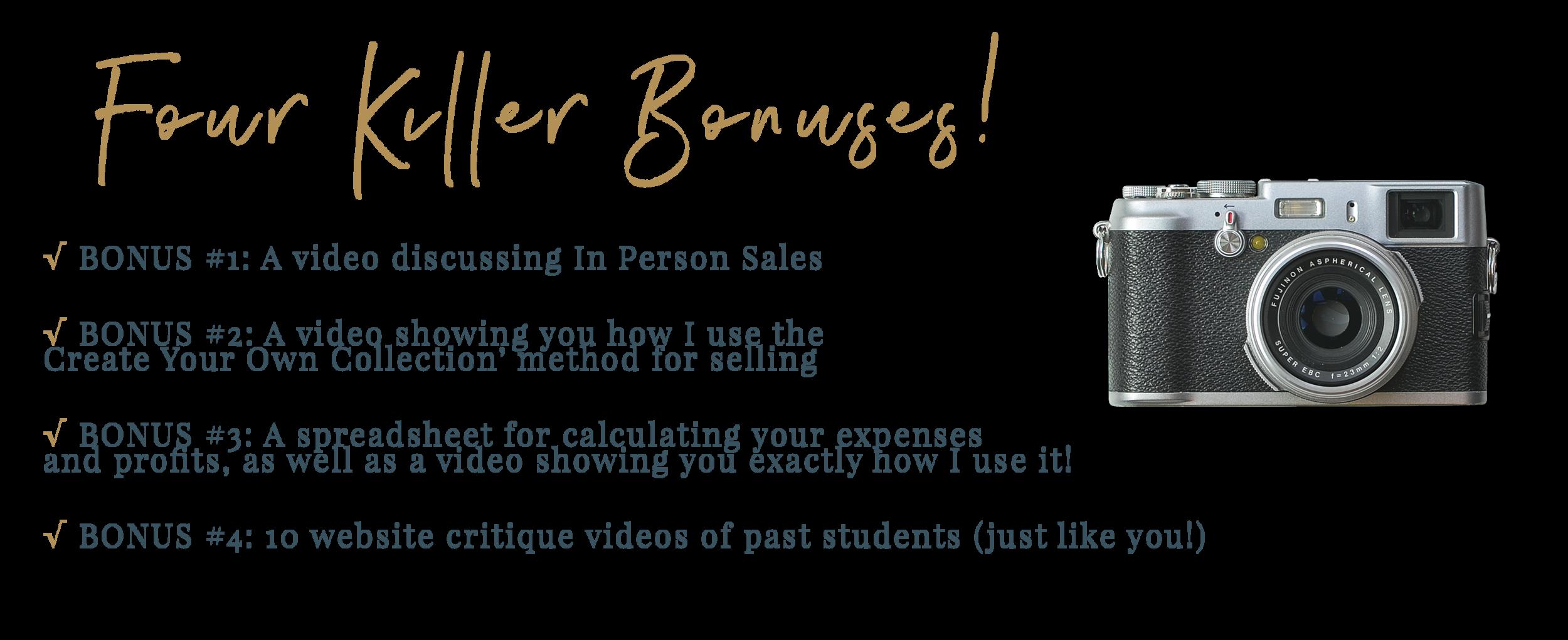 bonuses-business-class-for-photographers-online-lauren-grayson.png