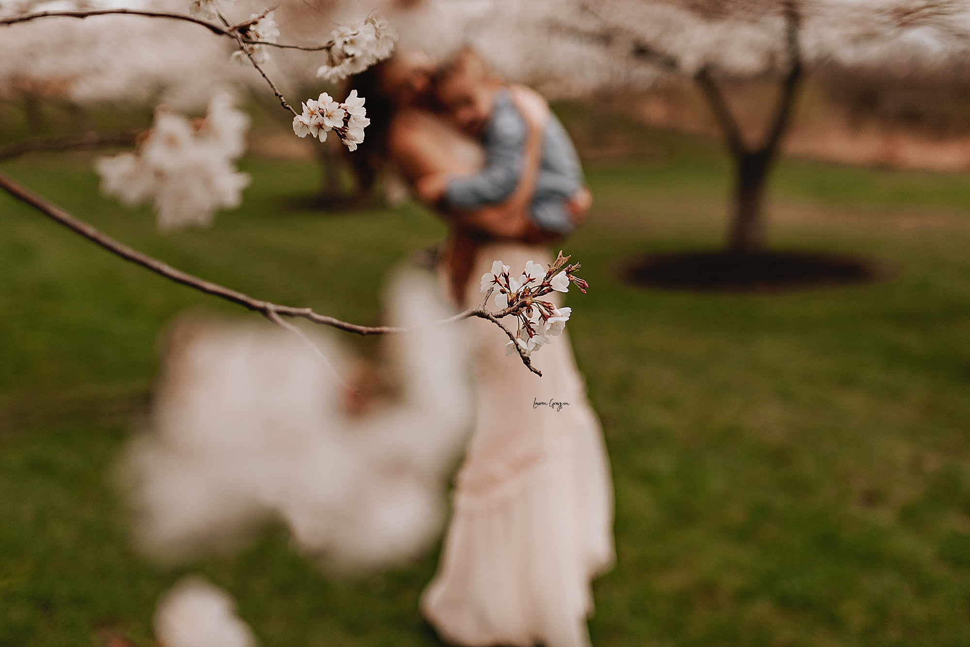 lauren-grayson-photography-cleveland-ohio-motherhood-family-child-photo-session-cherry-blossoms_0003.jpg