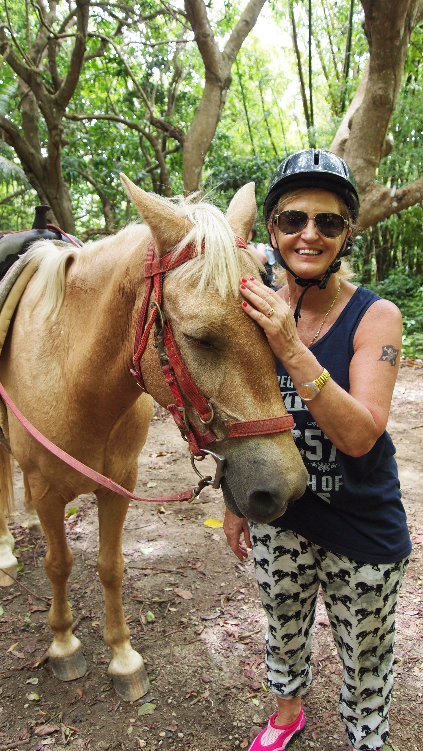 Horse Whisperer ( St Kitts Island, Carribean Sea )