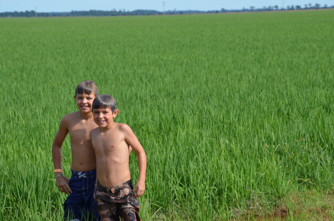 my boys in a zero grade rice field