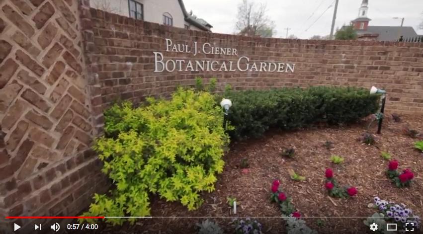 Kernersville-botanical-garden-spring-flowers-nature-photography-photographer-Greiner-roger-younce-north-carolina-flower-Greensboro-Jamesown