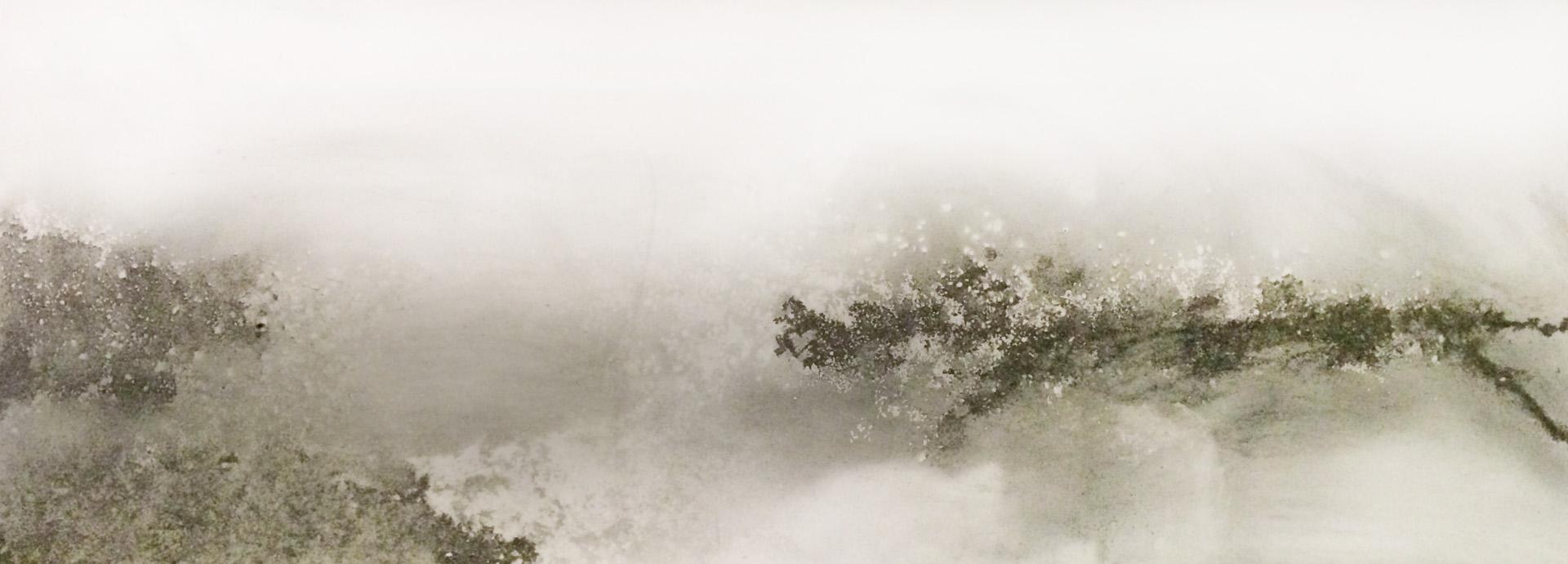 Fog at the Coast