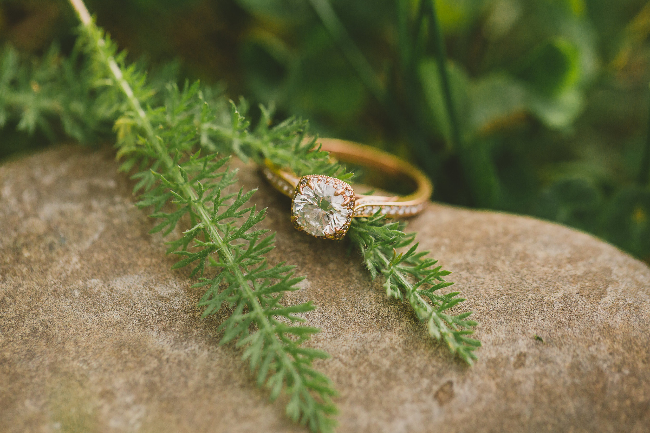 EngagementIza&Matthew (102 of 211).jpg