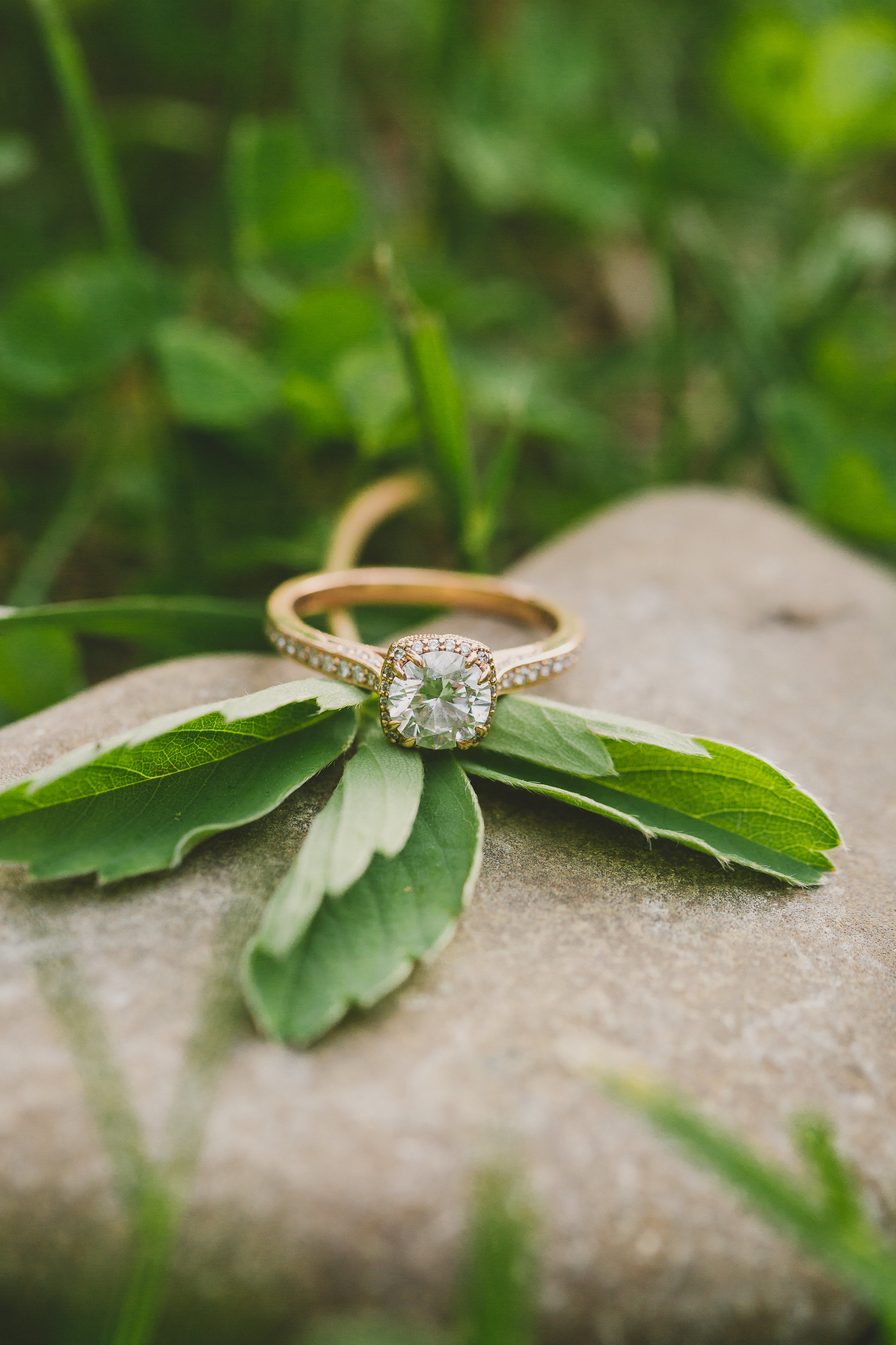EngagementIza&Matthew (99 of 211).jpg