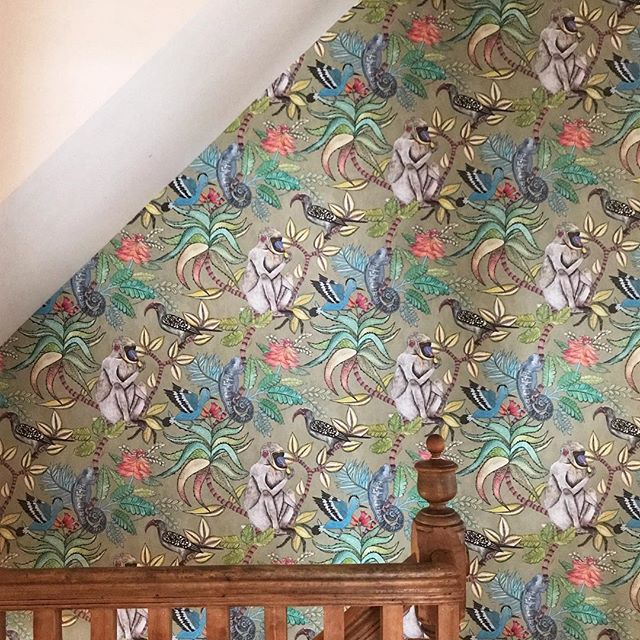 Just straight up monkeying around; Glebe style with clients who chose some pretty darn cool wallpaper.