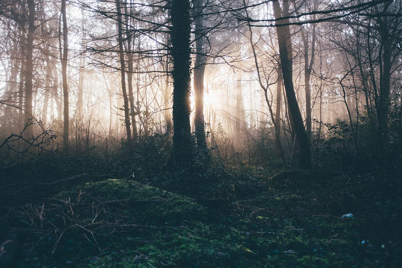 stavanger fog sunrise norge
