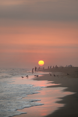 Beach 285