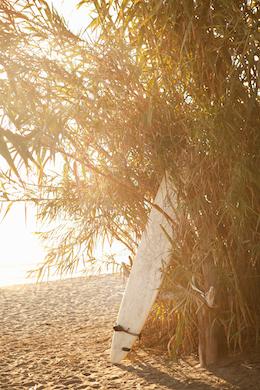 Beach 289