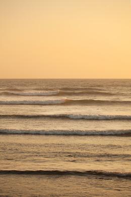 Beach 292