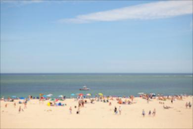 Beach 342