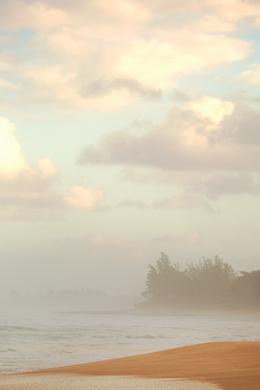 Beach 363
