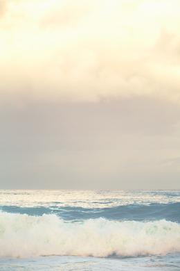 Beach 365
