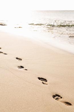 Beach 368