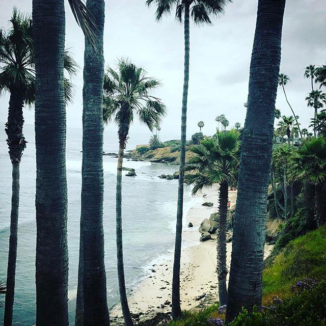 Rebranding ploy. #ca #lagunabeach #california #beach