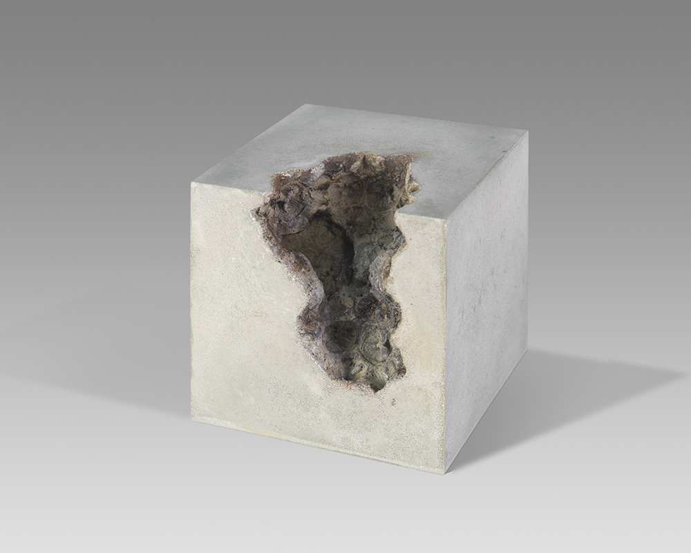 Divisions of void iv- 13cm x 13cm x 13cm - concrete