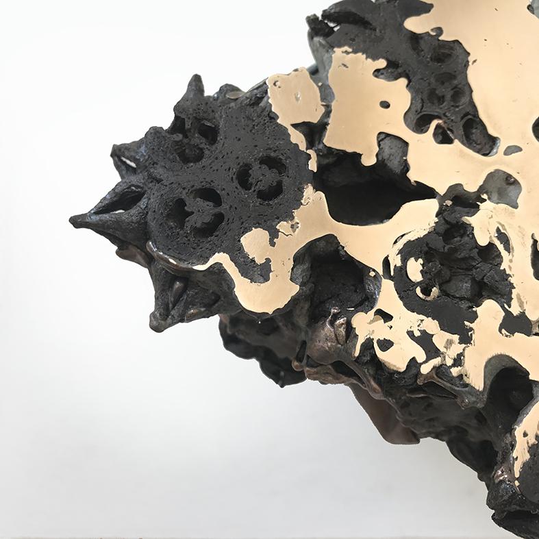 The Wealth of Nations (i) - 19cm x 19cm x 12cm - bronze, eucalyptus pods and concrete