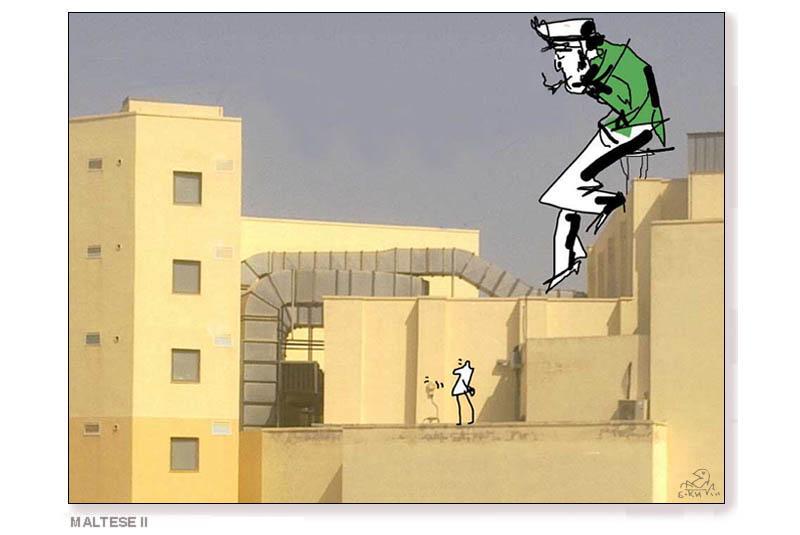 maltese2.jpg