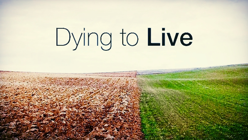 - Dying to LiveRomans 6:1-14Kyle NickersonFebruary 25, 2018