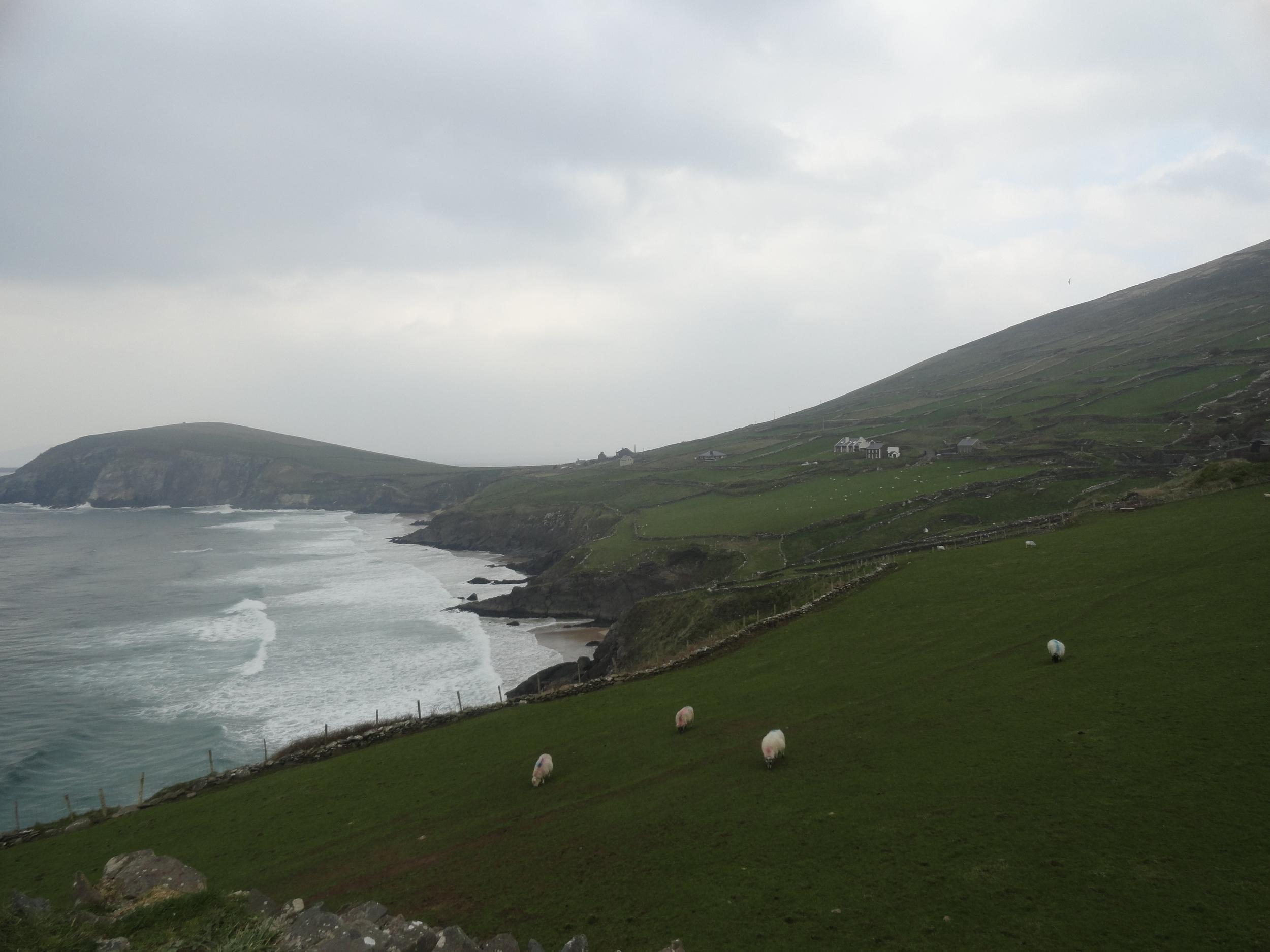 The Irish Countryside