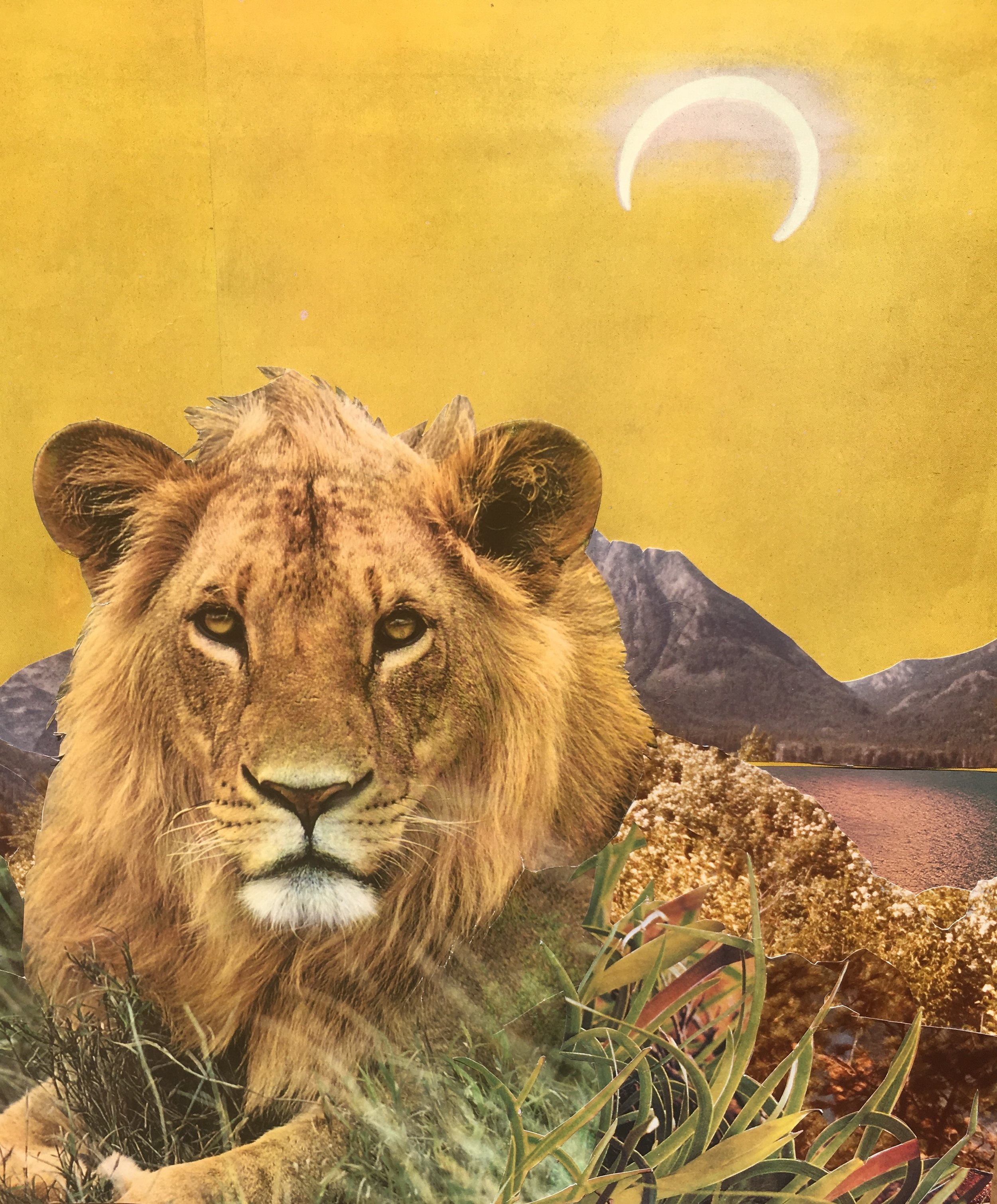 """""""Shine"""", Visual affirmation for new moon and lunar eclipse in Leo, by  Janna Dorothy"""