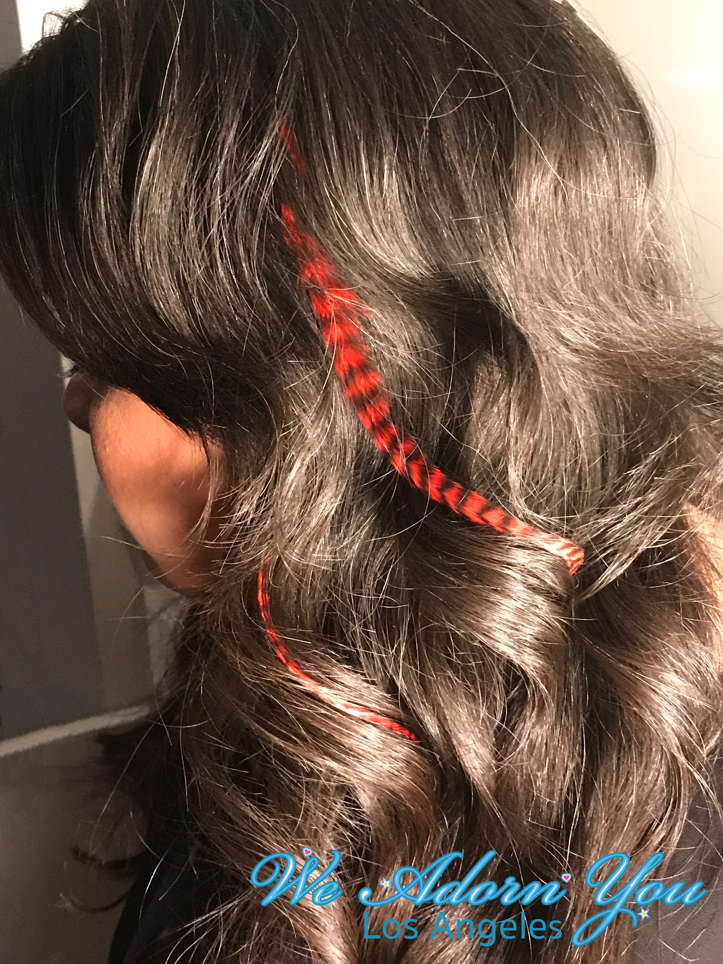 We Adorn You Los Angeles Hair Feathers Red.jpg