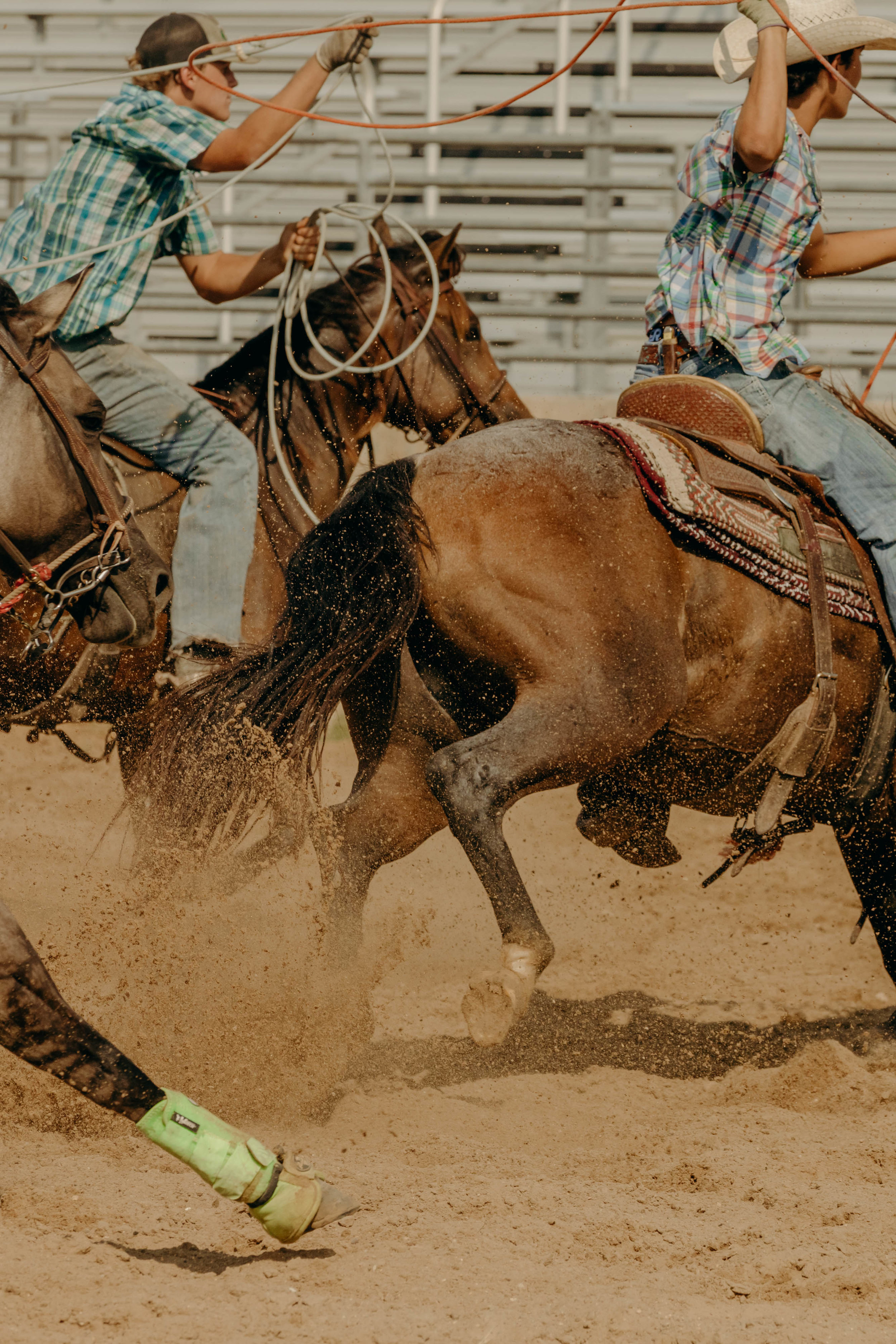 texas rodeo photography