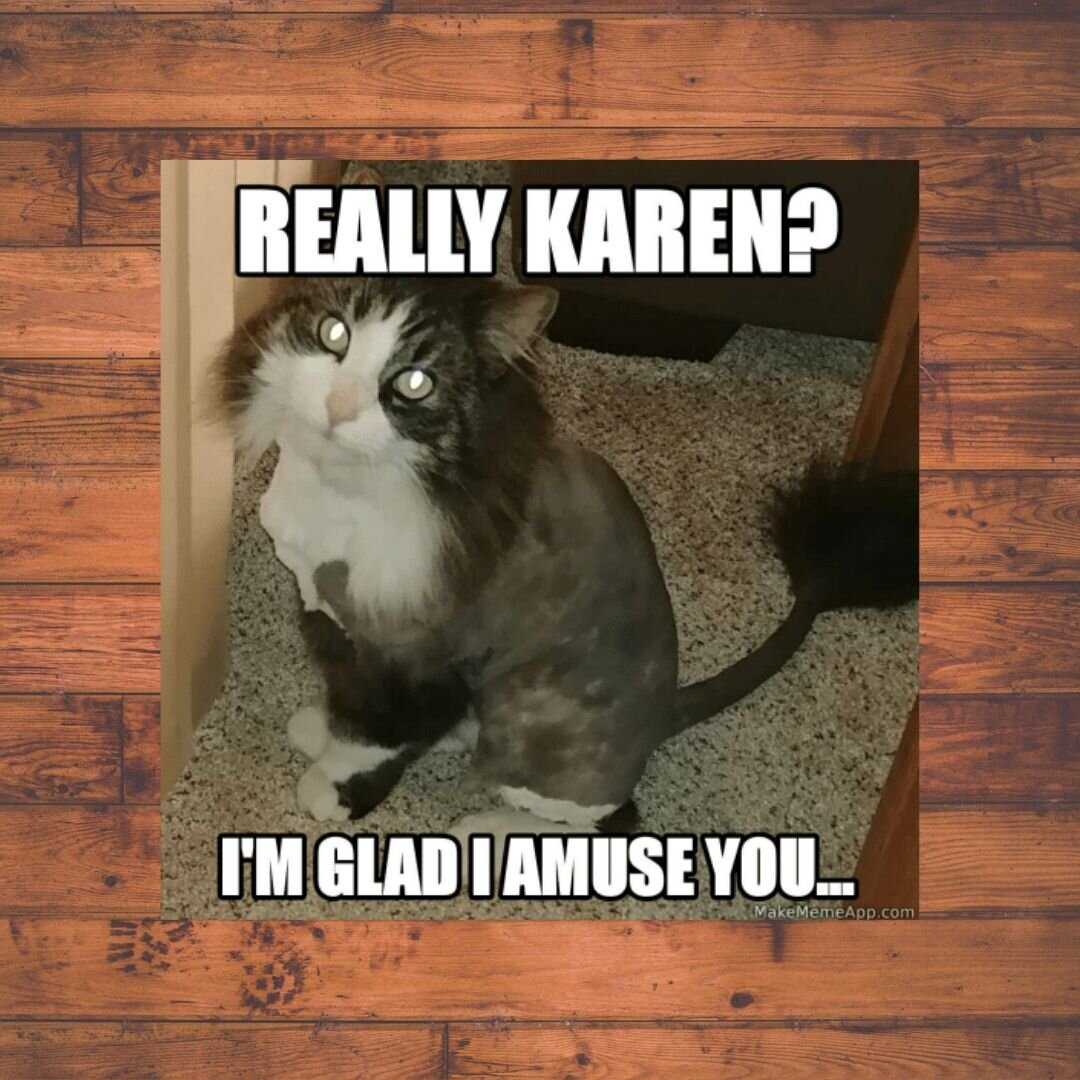 Don't  - be a Karen! (In my defense, it's been ages since I've used a cat pic on the blog).
