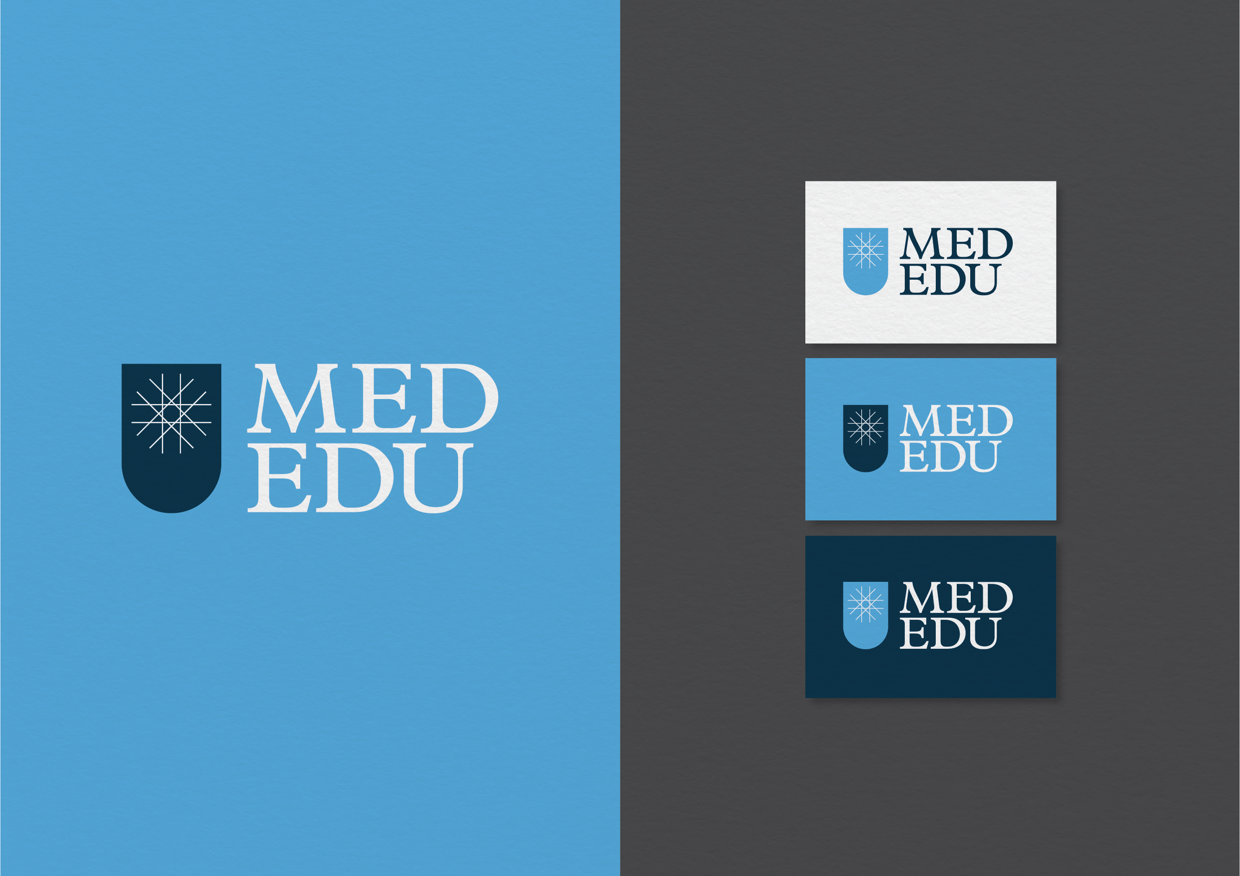 Med Edu - Overview CS-01.jpg