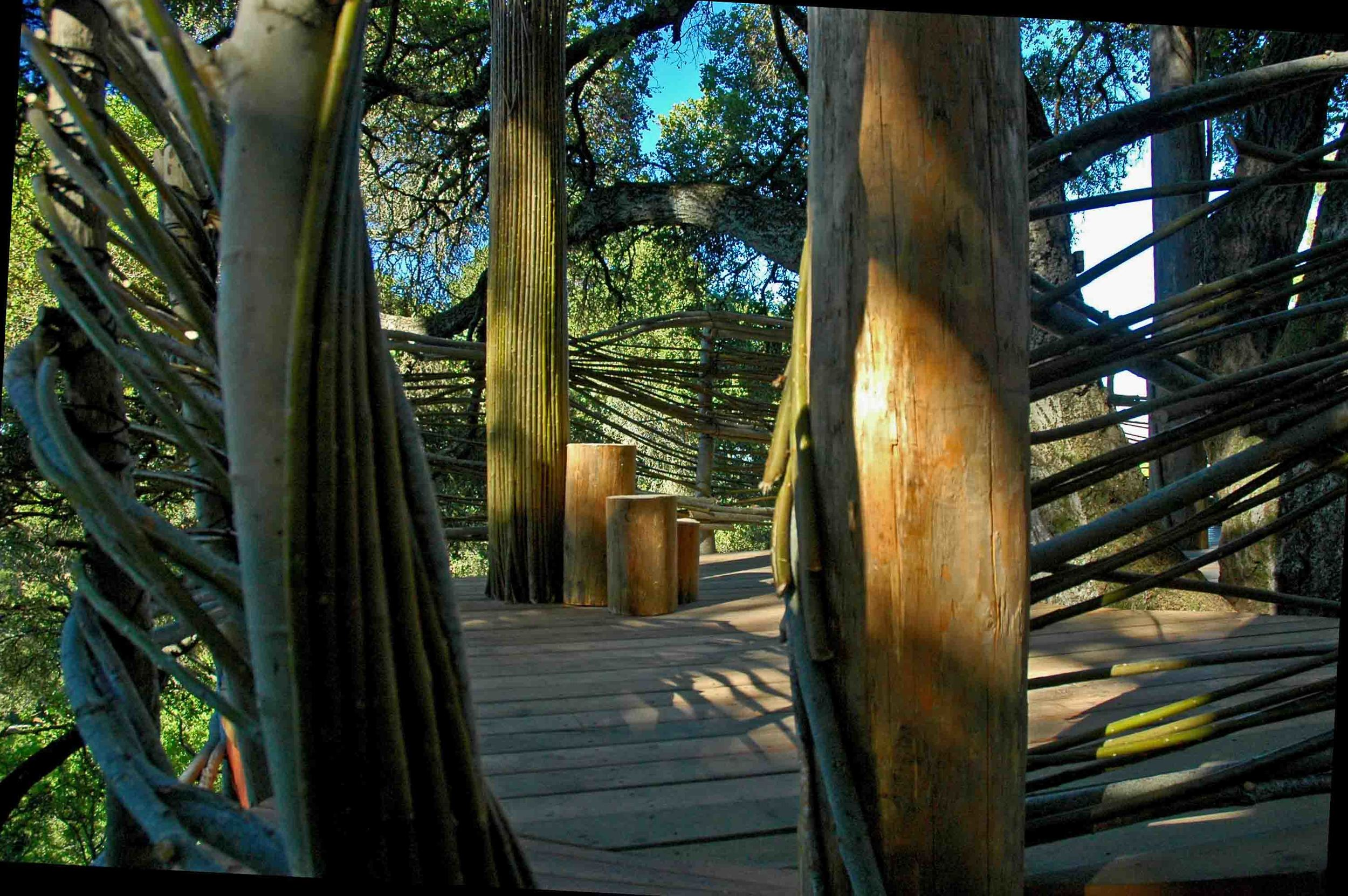 Mountain View Treehouse