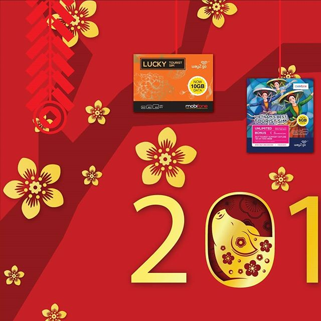 . . LUNAR NEW YEAR 2019 - THE YEAR OF 🐷 . . 🎊 PROMISING YEAR OF JOY, FORTUNE AND PROSPEROUS 🎊 . . ➖➖➖➖➖➖➖➖➖➖➖ . .  #way2go #vietnam #tourism #travel #trip2vietnam #hanoi #hochiminhcity #danang #nhatrang #simcard #data #connection #besttouristsim #travelwisely #way2govietnam #w2g #voyagevietnam #holiday #holidayinvietnam #travel2vietnam #vacation #lunarnewyear #usim #simcard #photography #instaphoto #instagram #picsoftheday #picsoninstagram