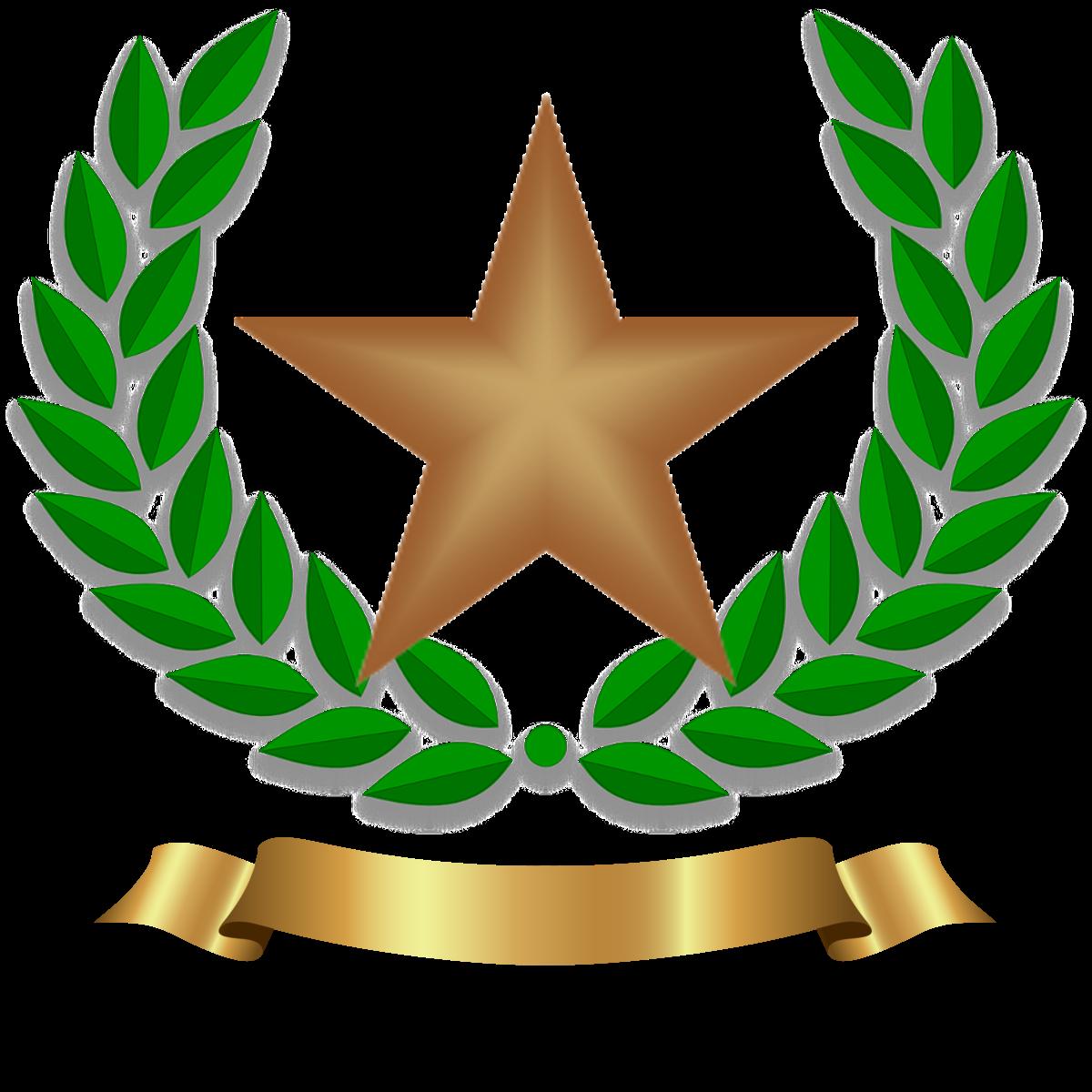Bronze star.png