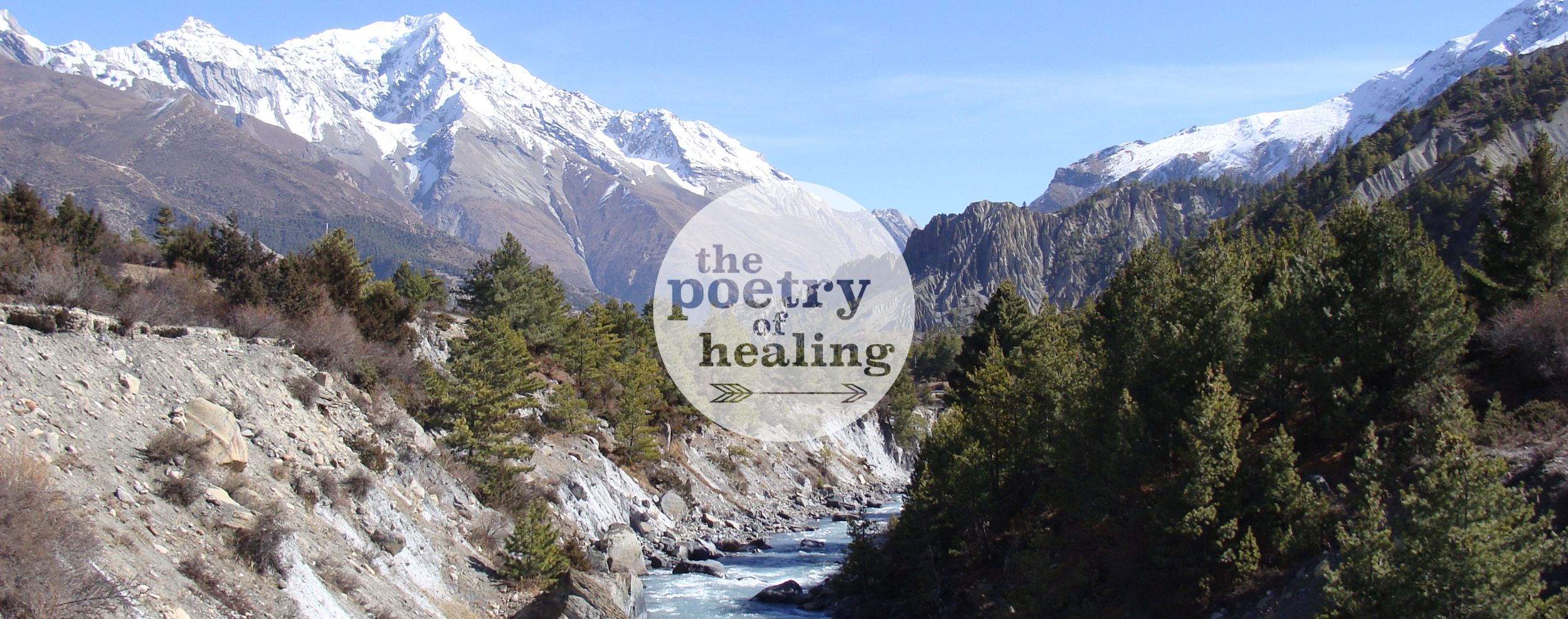 Poetry Of Healing Banner3.png
