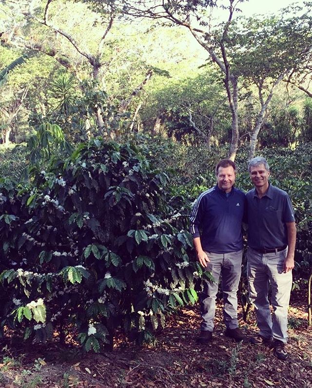 Had the pleasure of hosting Greg from @mayancafeaustralia on the farm! Always a great time when roaster come visit! Hoping someday we can make it to the #landdownunder ☕️ Disfrutando de la visita de nuestros amigos de Australia! Esperamos algún día visitar. #sanluiselvolcancito #mayancafe #roasterandfarmer #specialtycoffee