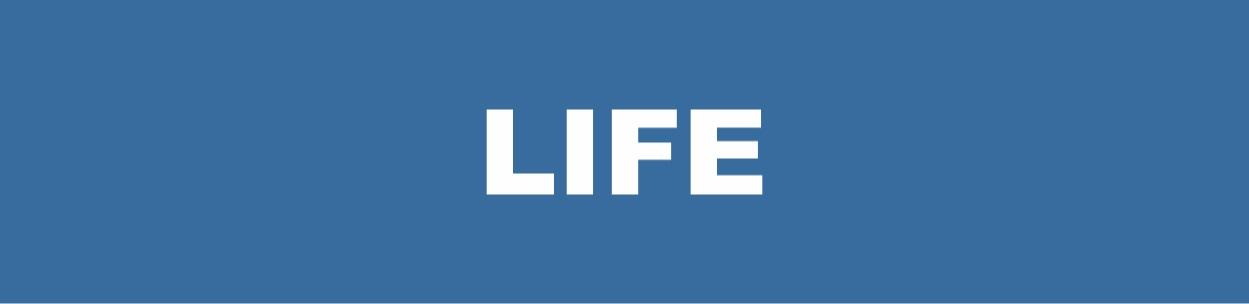 Life+ICON.jpg