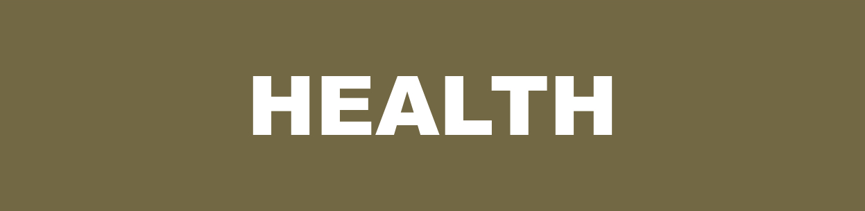Health ICON.png