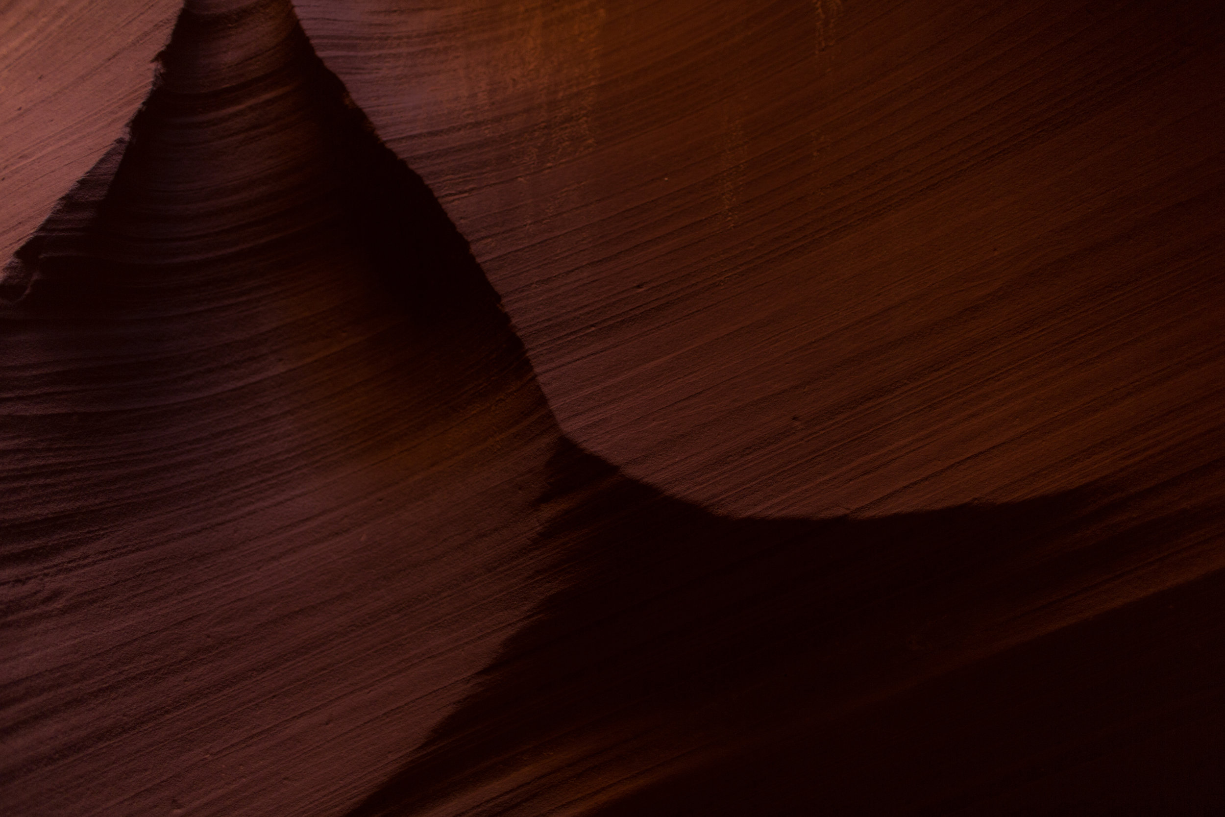 Antelope-1-17.jpg