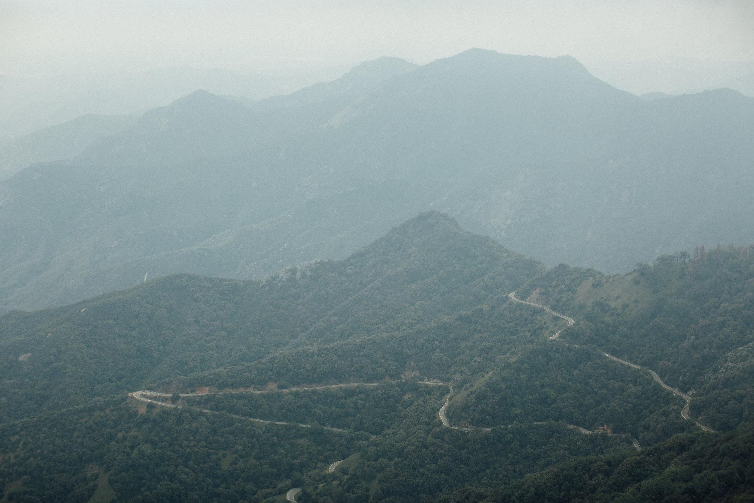 Sequoia-1-5.jpg