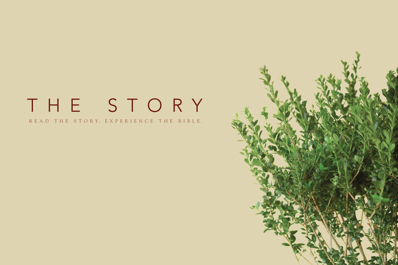 the-story.jpg