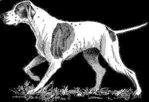 dog.png