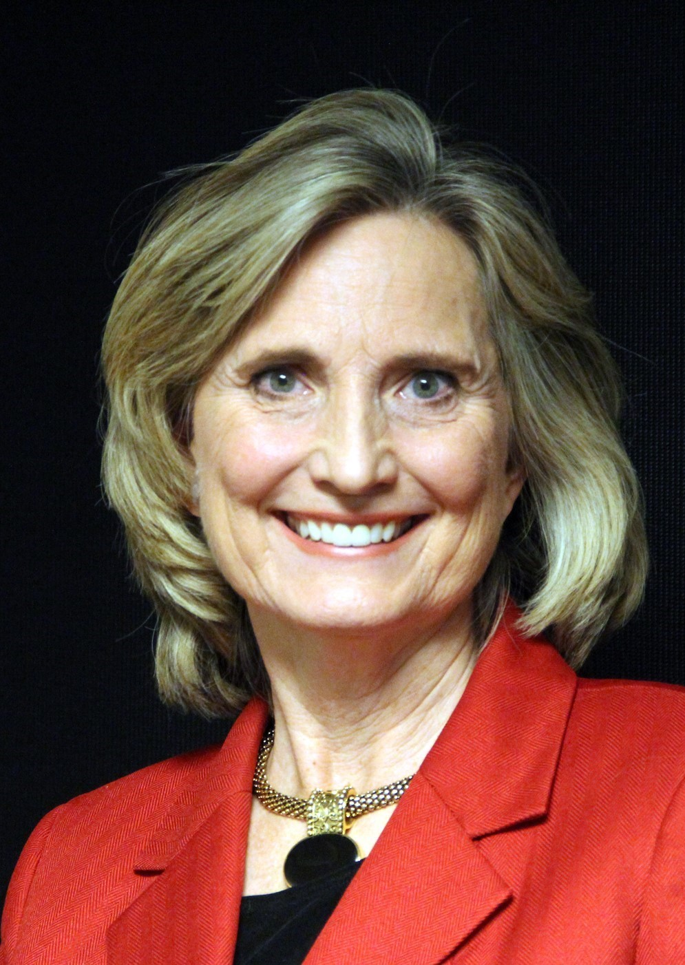 NANCY WILSON CEO.jpg