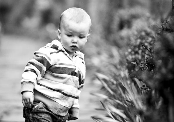 Family portrait photography - surrey