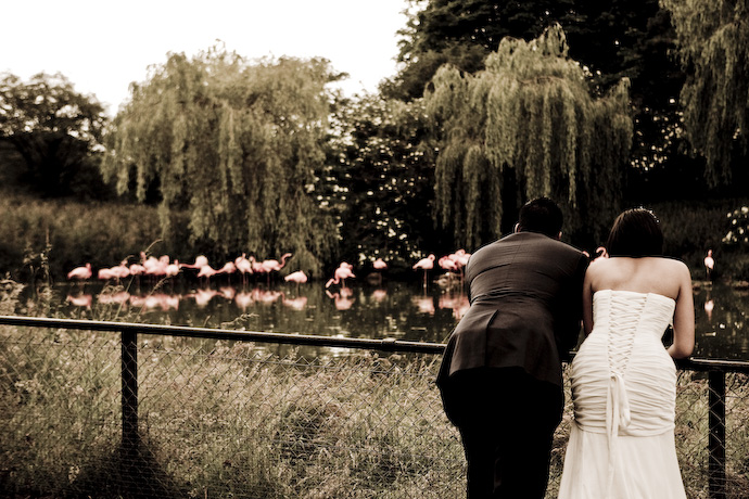 Hindu-Wedding-Photography-in-Bedfordshire-006