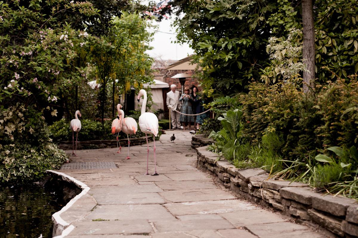 Kensington-Roof-Gardens-Wedding-Photos-008.jpg